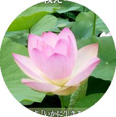 Ⅴ 仏教に見る祈りと教え